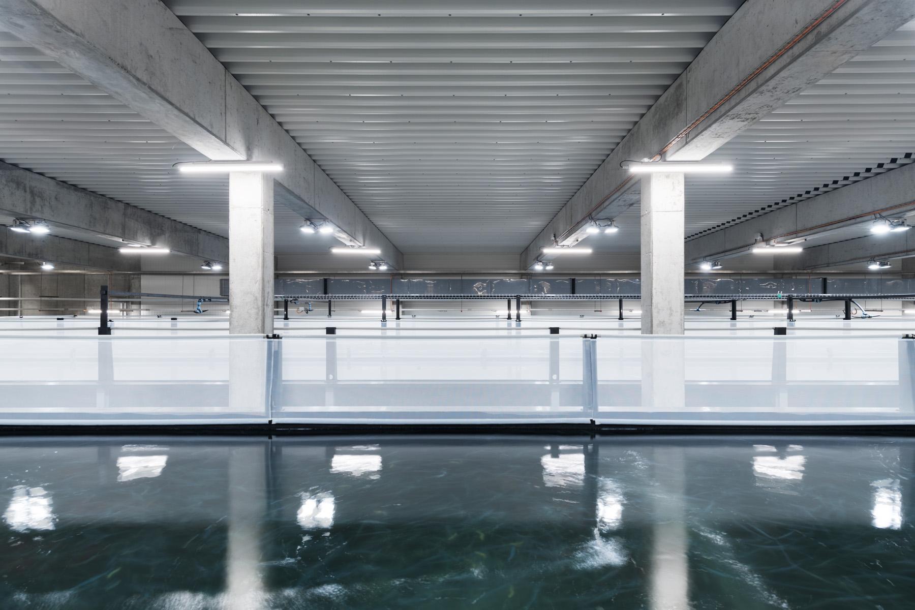 Neubau Hauptsitz SwissShrimp AG, Rheinfelden